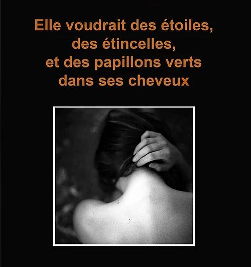 Elle voulait des étoiles, des étincelles et des papillons verts dans ses cheveux – Blandine Bergeret